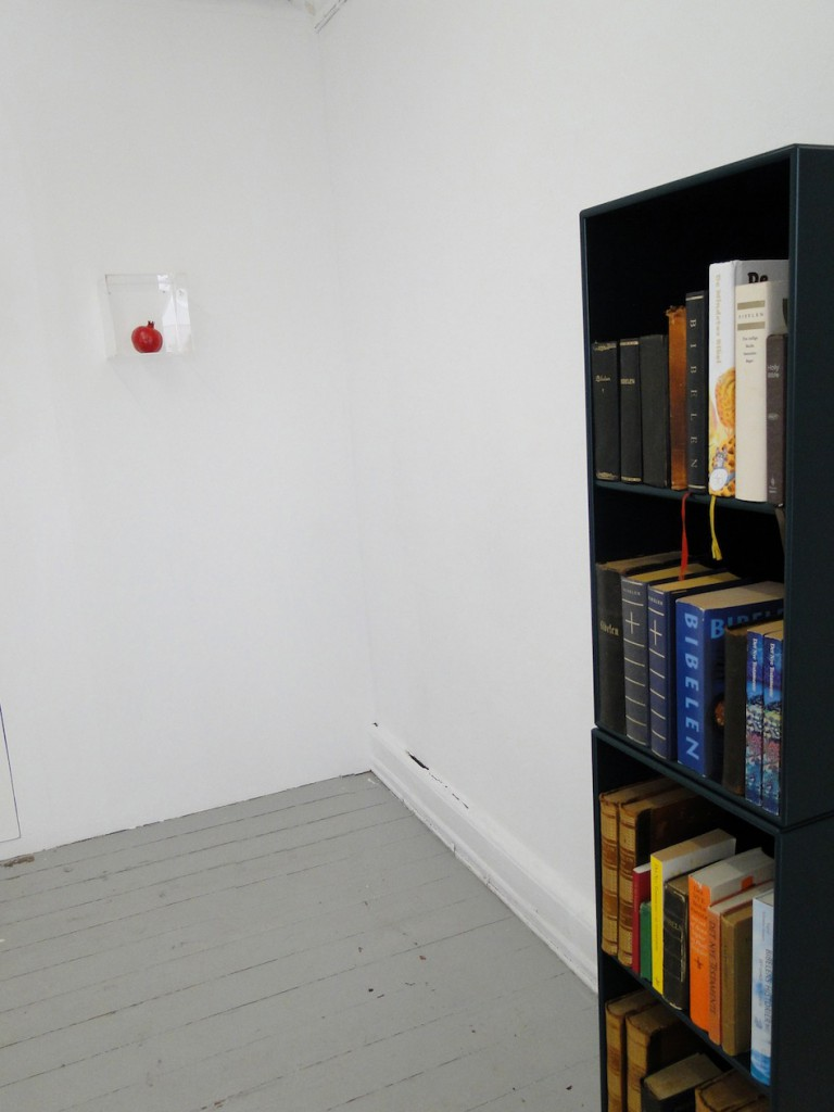 InstallationviewAge+books